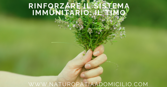 Sistema Immunitario, Olio Essenziale, Timo