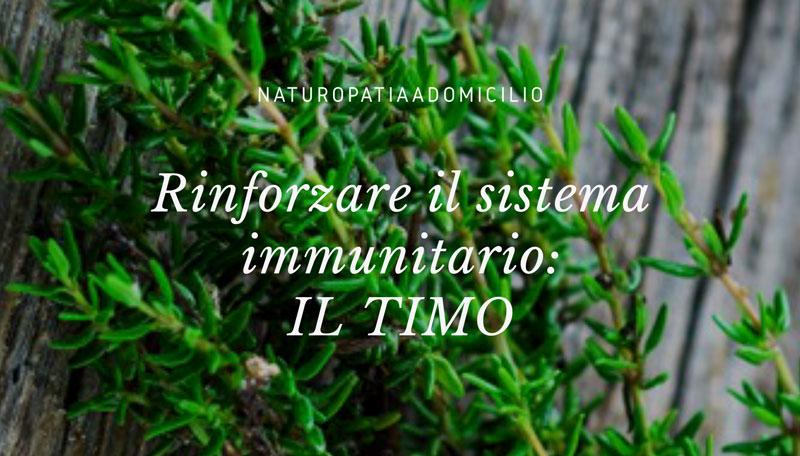 Rinforzare Il Sistema Immunitario: IL TIMO