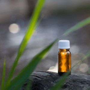tea tree, olio essenziali, aromaterapia, naturopatiaadomicilio, cure naturali